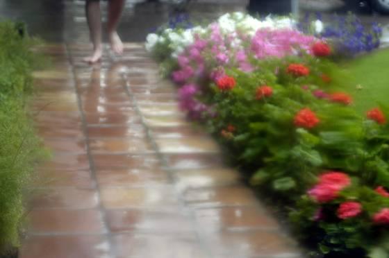 Spring_rain