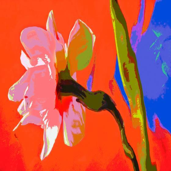 Floral_fantasy_2