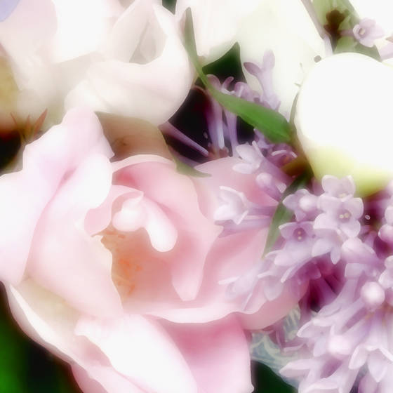 Bouquet_iv