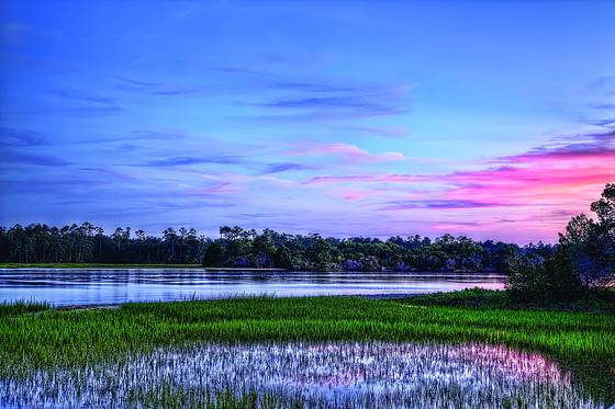 Wetlands_at_dusk