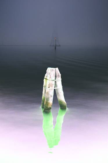 In_the_fog__4