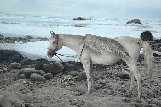 Ice_horse
