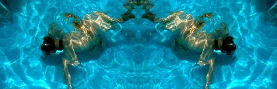 Frog_morph_2