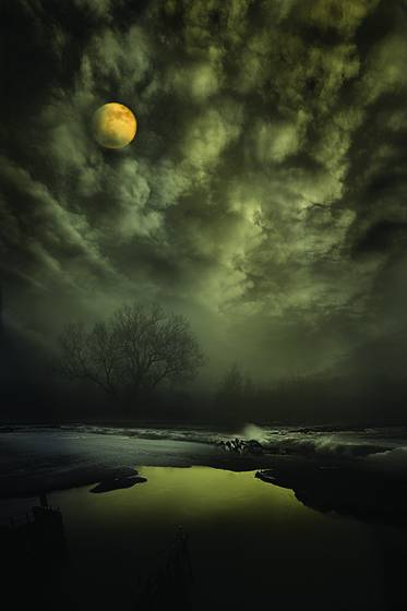 Midnight_on_the_marsh