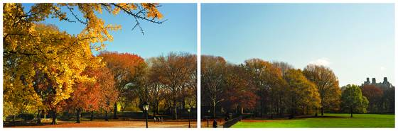 1_a_walk_in_the_park_-_early_fall