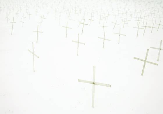 Crosses_in_the_snow