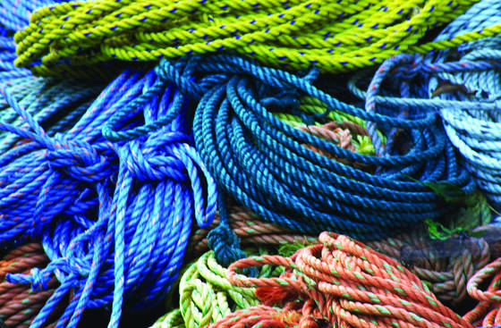 Blue_rope
