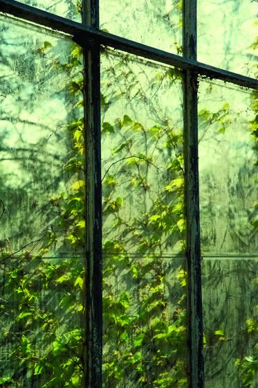 Window_9