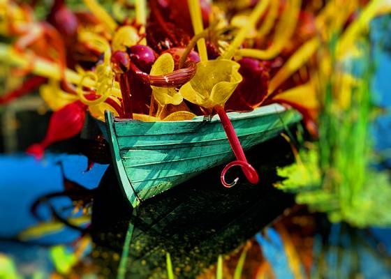 Boat_glass