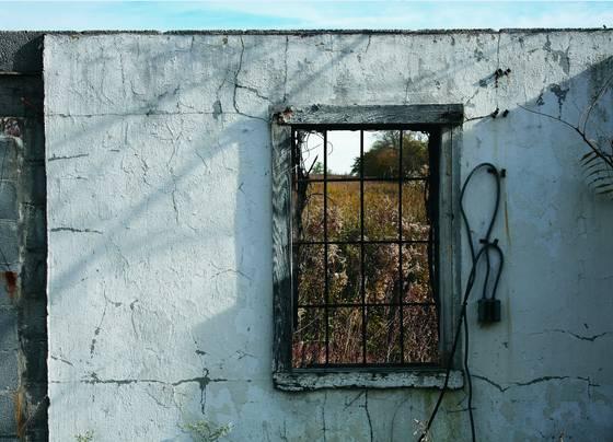 November_window