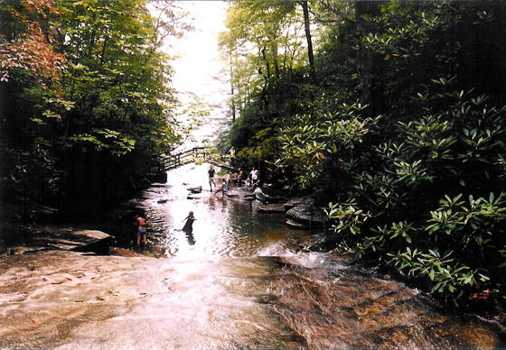Top_of_hickory_nut_falls