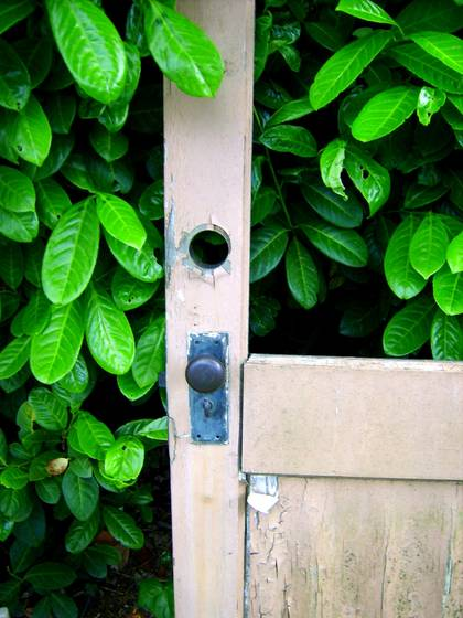 Door and hedge