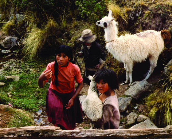 Child_shepherds