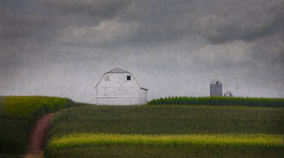 Amish_farm