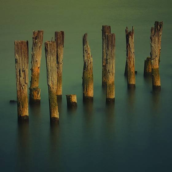 Old_piling_composition__5