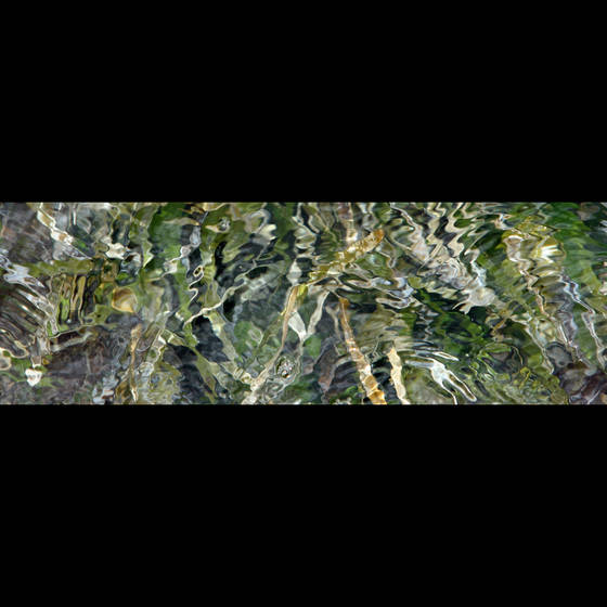 Sea_grass