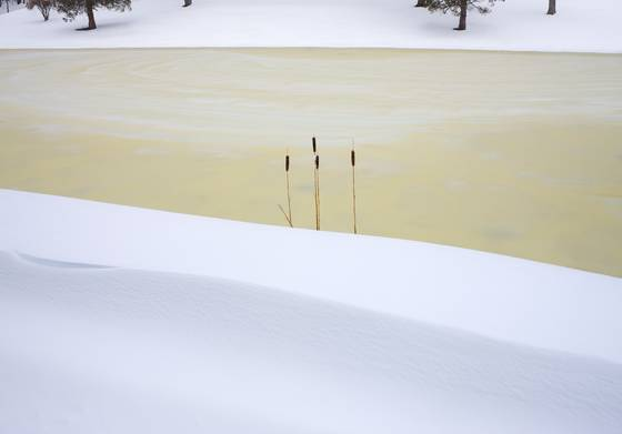 Frozen_pond