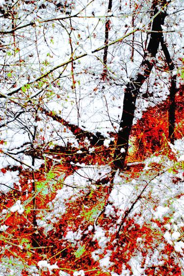 Winter_fantasy