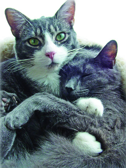 Tas_and_mom