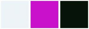 Color Scheme with #EDF4F8 #C911CB #061408