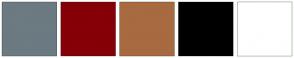 Color Scheme with #6C7A82 #850007 #A86A40 #000000 #FFFFFF