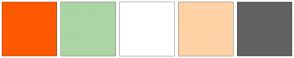 Color Scheme with #FF5900 #ACD4A5 #FFFFFF #FFD2A6 #616161