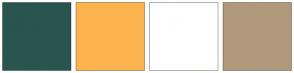 Color Scheme with #29554E #FCB34E #FFFFFF #B0997C