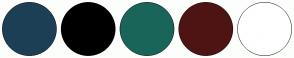 Color Scheme with #1D3F56 #000000 #19655A #4E1414 #FFFFFF