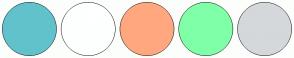 Color Scheme with #62C2CC #FEFFFF #FFA87F #7FFFA8 #D4D8DB