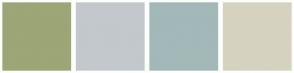 Color Scheme with #9CA676 #C3C8CD #A3B8B8 #D5D3BF