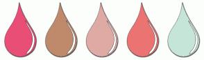Color Scheme with #E94E77 #BF896C #DFAAA4 #EB7473 #C6E5D9