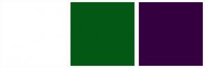 Color Scheme with #FFFFFF #035815 #360040