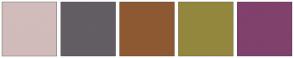 Color Scheme with #D1BBBB #635D64 #8D5932 #93873E #80416C