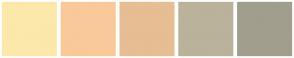 Color Scheme with #FCE8AB #F9C999 #E7BD93 #BAB29B #A19E8D