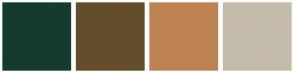 Color Scheme with #153B2E #634D2B #BD8353 #C4BCAB