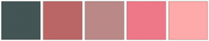 Color Scheme with #445555 #BB6666 #BB8888 #EE7788 #FFAAAA