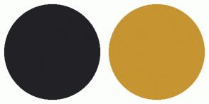 Color Scheme with #222126 #C69431