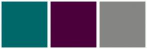 Color Scheme with #016869 #4B003C #858583