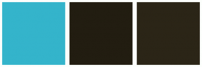 Color Scheme with #34B4CB #221D11 #2B2517