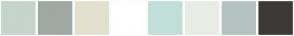 Color Scheme with #C5D5CB #9FA8A3 #E3E0CF #FFFFFF #C0DFD9 #E9ECE5 #B3C2BF #3B3A36