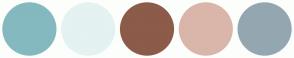 Color Scheme with #84B9BF #E4F2F1 #8C5B49 #D9B6A9 #94A7B0