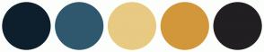 Color Scheme with #0D1F2D #2F586E #E8CA82 #D2973B #211F22
