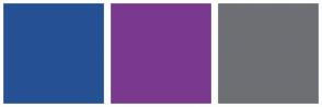 Color Scheme with #265094 #7A398E #6E6F74