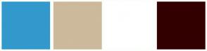 Color Scheme with #3399CC #CDB99C #FFFFFF #330000