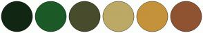 Color Scheme with #112713 #1C5A28 #484C2D #BCA966 #C4923A #905332
