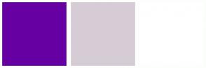 Color Scheme with #6700A3 #D6CCD6 #FFFFFF