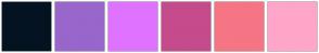 Color Scheme with #041322 #9966CC #DF73FF #C54B8C #F57584 #FFA6C9