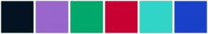 Color Scheme with #041322 #9966CC #00A86B #C70233 #30D5C8 #1842C9