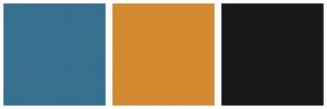 Color Scheme with #38708F #D48A31 #19171A