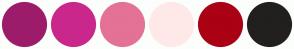 Color Scheme with #9C1C6B #CA278C #E47297 #FFE9E8 #AA0114 #221F1F